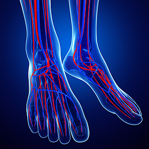 Signs And Symptoms Of Poor Circulation In Feet Advanced Foot